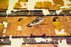 Big bird (Stray Toaster) Tags: cambridge fitzwilliam museum egyptian book dead papyrus ramose