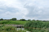 20170711_172627-X-T2-6118.jpg (Erwin Schoonderwaldt) Tags: water castricum dunes green netherlands landscape sky pwn