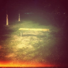 •Bench (sergiochubby) Tags: memory nostalgia bench tree night nightscape warm light colorful colourful vintage