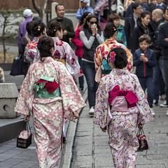 Maruyama Park, Kyoto  | 円山公園 (dckellyphoto) Tags: kyoto japan japan2017 2017 maruyamapark kimono kimonos girls women female walking traditional asia 日本 にほん eoshe crowd streetphotography people 和服 京都市 円山公園
