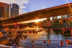 Melbourne City Love (DSC_8117) (fatima_suljagic) Tags: fineartprints fatimasuljagicmelbourne photographer artstudiomaja artstudiomajacomau melbourne melbournephotographer melbournecity australia australianphotographers