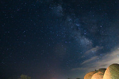 (Camille Aligue) Tags: joshuatreenationalpark milkyway stars galaxy astrophotography nightsky nationalpark