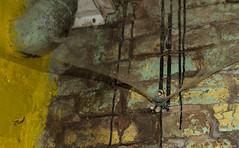 Bad escape (misterblue66) Tags: schtroumpf smurf d610 nikon nikonpassion microcosme spider araignée fuite évasion escape sentinelle sentry sentinel 2470 tamron