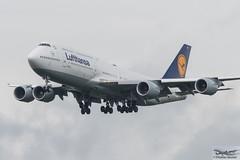 Lufthansa Boeing 747-830 D-ABYF Sachsen-Anhalt (893103) (Thomas Becker) Tags: lufthansa dlh boeing 748830 b747 747 b748 dabyf sachsenanhalt staralliance cn37830 ln1456 280912 231012 lh433 chicago ord fraport flughafen airport aeroport aeropuerto aeroporto fra eddf frankfurt plane spotting aircraft airplane avion aeroplano aereo 飞机 vliegtuig aviao аэроплан samolot flugzeug germany deutschland hessen rheinmain nikon d800 nikkor 70200 vrii fx raw gps aviationphoto cthomasbecker 170720 arrival geotagged geo:lat=50039523 geo:lon=8596970 aerotagged aero:airline=dlh aero:man=boeing aero:model=747 aero:series=8 aero:tail=dabyf aero:airport=eddf