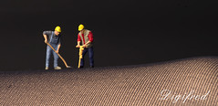 Men at work. (Digifred.) Tags: digifred 2017 nederland netherlands holland pentaxk5 menatwork arbeiders tinypeople miniature smallworld toy miniatuur leg pantyhose