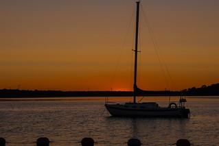 Sunrise at Petrie Island