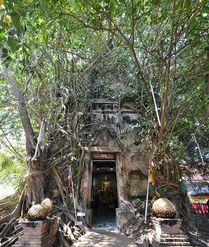 samut songkhram - thailande 29