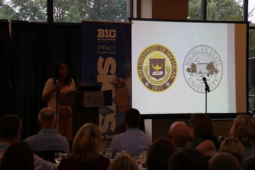 Big Ten Development Conference, July 2017