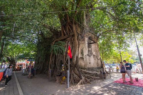 samut songkhram - thailande 31