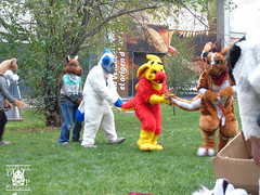 DSC00183 (Thanriu) Tags: fursuit chile meet junta furry santiago friends amigos canid monster avian ave canino monstruo badge angel dragon parrot artic wolf yerik dog