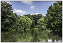 Downing Park (jsleighton) Tags: pond park downing newburgh ny trees willows sky landscape reflections