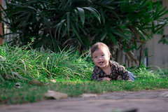Alice Evangelista (Danilo Yde Fotógrafo) Tags: brasil daniloyde fotografia marilia photograpy saopaulo