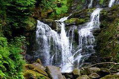 Torc Waterfall (annalisabianchetti) Tags: torc waterfall cascate ireland irlanda nature rocks wood river moss wild