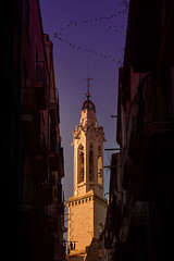 The golden tower. Valls, July 2017. f5.6; 1/160s; ISO 100; FL50mm. © Juan Manuel Sáenz de Santa María, 2017 (Brenus) Tags: impresiones lensblr photographers tumblr original architecture sunset urban street photography churches birds ducks valls