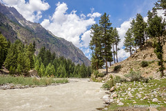 Naltar Valley - Gilgit - Pakistan (meesaw_sabba) Tags: naltar naltarvalley nature landscape pakistan pakistaniphotographers pakistaniphotography gb gilgitbaltistan gilgit travelpakistan travel travelling travelnorthpakistan travelguidepakistan waseemabbas canon canon600d