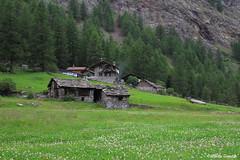 IMG_0157 (alberto.gentile89) Tags: canon eos 7d italy valle daosta cogne landscape mountains mountain nord summer polarizing hoya nd
