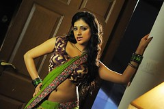 Indian Actress Haripriya Hot Sexy Images Set-1  (23)