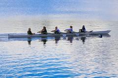 Hollingworth Lake 80661 (Ellisroger) Tags: rowing boats boat rowingboat hollingworthlake littleborough