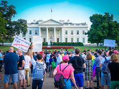 2017.07.26 Protest Trans Military Ban, White House, Washington DC USA 7616