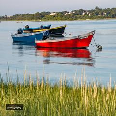 _MG_6601-2 (Alex Chilli) Tags: massachusetts usa america cape cod landscape