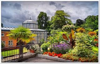 Wilhelma, Botanischer Garten
