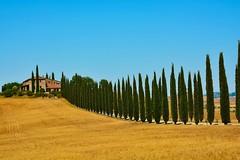 Il Viale (giannipiras555) Tags: toscana viale cipressi collina casale panorama