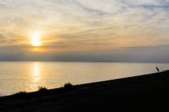 Peaceful Sunrise (gendarme02) Tags: nikon water livingston 2015 lake morning blue texas d7100 sunrise landscape boating august sky bird wildlife summer reflection nikond7100