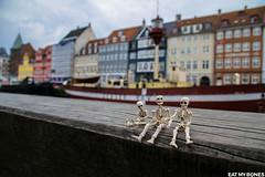 Copenhagen - Pose Skeleton - Toy photography - Miniature - Eat my Bones (EatMyBones) Tags: christiania copenhague elephant fgurine giant miniature poseskeleton rement skeleton toy toyphotography