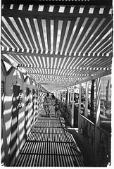 023_014 (luca nervegna) Tags: salerno roccerosse shadows lomography lca1 lomo