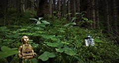 Where are You ? (NoeTum) Tags: lego outdoor forest starwars c3po r2d2 grass clover trefoil trees pentax