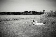 Lazy days of Summer (JulieK (thanks for 8 million views)) Tags: 117picturesin2017 ourladysisland lake wexford ireland irish blackandwhite bw monochrome canoneos100d postprocessed sliderssunday hss landscape scenery scenic people lazydaysofsummer
