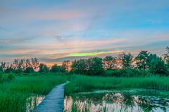 DSCF4458.jpg (brammetje2012) Tags: holland fujixe1 zonsondergang fujinonxf1855mm284lmois beekbergerwoud beekbergen nederland oerbos sunset dutch klarenbeek gelderland nl flickrunitedaward