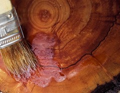 The oil treatment (Terraria) Tags: wood treatment woodwork oil paint brown