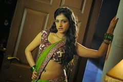 Indian Actress Haripriya Hot Sexy Images Set-1  (98)