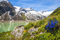 Kaprun reservoir (alexander elzinga) Tags: kaprun reservoir barrage