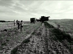 Les Moissons du Ciel : Tres - Hors Collection (théorieartistiquedusoleilhabité) Tags: moissoneuse moissons lesmoisonsduciel moissoneusebateuse ferme farm champs campagne tracteur noiretblanc blackandwhite cereales