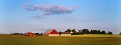 Farming - Fuji Superia 200 (magnus.joensson) Tags: sweden swedish skåne summer field farming farm panorama 24x65 hasselblad xpan 90mm fuji superia 200 c41 handheld söderslätt