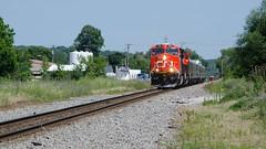 CN3091WaukeshaWI7-18-17 (railohio) Tags: cn trains waukesha wisconsin d7000 071817 et44ac p300 special officecartrain canadiannational privatevarnish