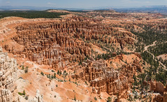 BRYCE CANYON (Daryshoot) Tags: daryshoot bryce canyon usa ouest canon 5d4