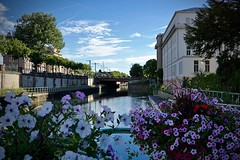 Mulhouse (Gaetan682) Tags: sony alpha 6000 a6k a6000 love sigma 30mm 14 contemporary lens canal water eau fleurs flowers flower couleurs colors blue ciel bleu traitement photos mac macbookpro2017 nuages pont bridge arbre arbres nature vert reflet reflection inspiration villeouvrière été sun soleil beauté chaleur promenade france mulhouse