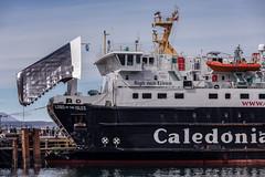 Nom nom nom (Jan Hoogendoorn) Tags: scotland unitedkingdom veerboot ferry caledonian lordoftheisles