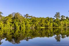 Usp - Pirassununga (Vincent Zanicheli) Tags: usp pirassununga brasil interior de são paulo natureza paisagem lagoa verde azul bonito vida selvagem nature landscape beautiful water wildlife tree blue green landscapes