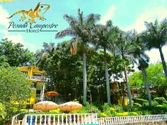 ℹℹHA LLEGADO LA SÚPER PROMOCIÓN DEL #HOTELPOSADACAMPESTRE‼💯 TE INCLUYE: 3 DÍAS 2 NOCHES DE ALOJAMIENTO🏨 ➕ DESAYUNOS Y CENAS🍳 ➕ MASAJES RELAJANTES💆 ➕ RAFTING🚣 ➕ A (hotelposadacampestre) Tags: nature palmas naturaleza pool jacuzzi sangilgrupohotelero hoteles hotel hotels descanso hotelposadacampestre hotelería piscina