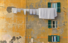 simplicity (poludziber1) Tags: city colorful cityscape color colorfull street streetphotography skyline sky building orange architecture camogli light liguria window italia italy travel urban fotocompetition fotocompetitionbronze matchpointwinner mpt567