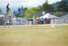 _MG_9942 (Corey Polis) Tags: akc coursing dogsports fastcat july302017 mushu nwrrc sequim