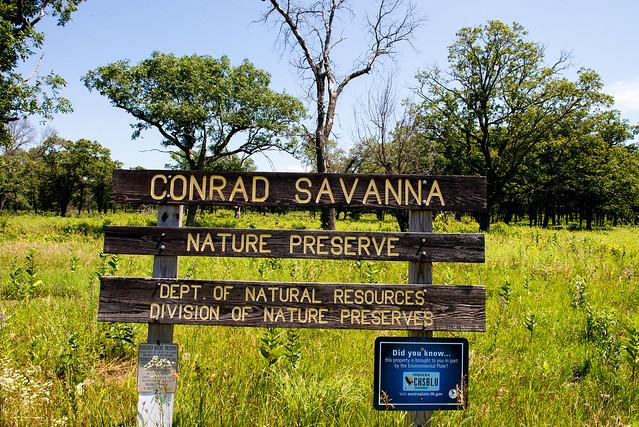 Conrad Savanna Preserves July 17, 2017