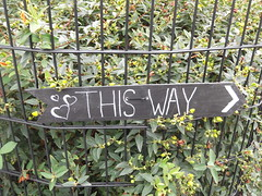 30th July 2017 (themostinept) Tags: arrow hearts words thisway chalk chalkboard notice directions instructions leaves bushes railings fencing london hackney n16 stokenewington albionroad hawksleyroad plants greenery berries