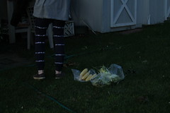fourth 029 (reenbrady) Tags: beekman beekmanstreet artsfair saratoga saratogasprings liz lizolson jonathan terrence america fourthofjuly usa upstate upstateny new york flag portrait canon canont3 uncommongrounds clowns circus corn