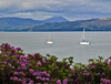 Sailing On The Sound (maureen bracewell) Tags: highlands loch scotland boats flowers landscape mountains isleofskye rhododendrons soundofsleat knoydart highlandsofscotland uk cannon maureenbracewell yachts sailing leisure clouds kilmore