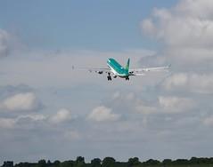 Aer Lingus                                     Airbus A330                                                        EI-EWR (Flame1958) Tags: aerlingus aerlingusa330 a330 eiewr airbus airbusa330 240717 0717 2017 dub eidw dublinairport travel holiday vacation irelandvacation irelandholiday 7588